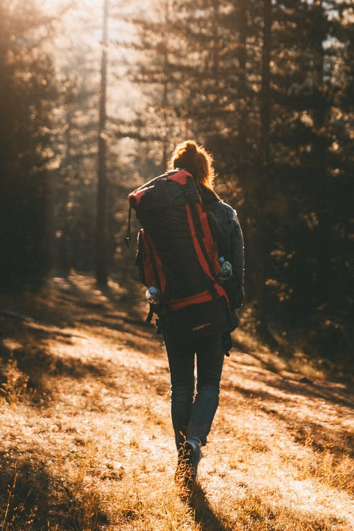 Unrecognizable woman with backpack walking in forest