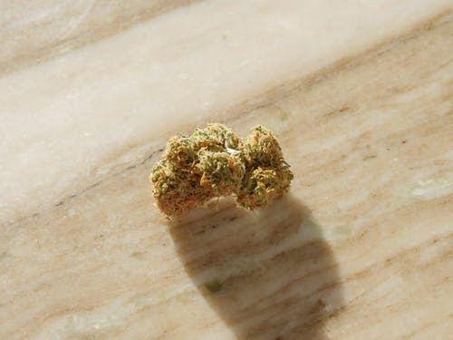 Close-Up Photo of Cannabis Flower on Top of Wooden Surface