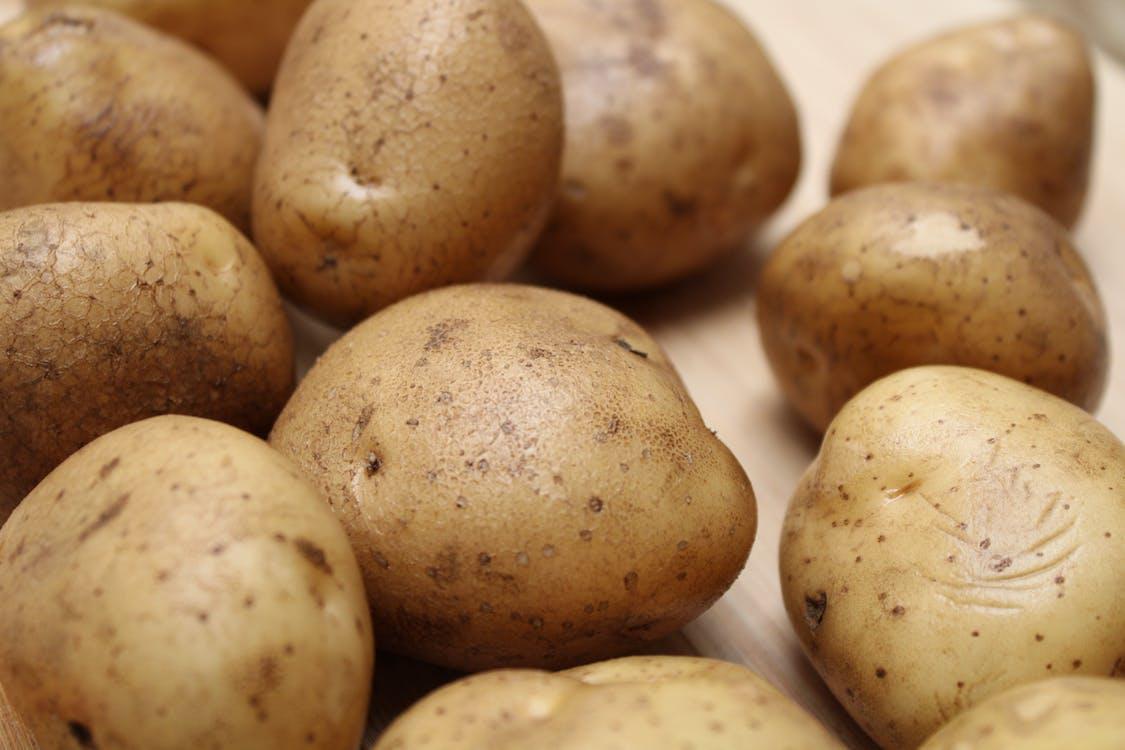 Foto stok gratis akar sayuran, bahan, bahan makanan