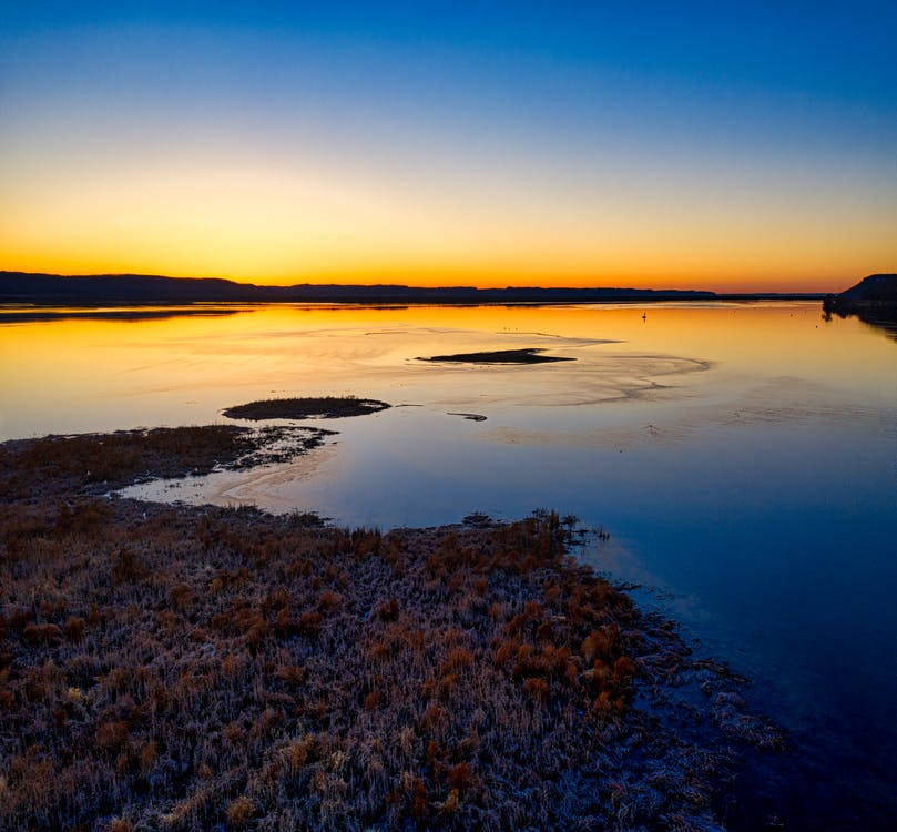 Brown Grass on Body of Water during Sunset