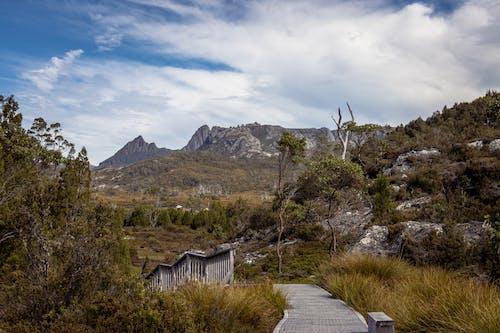 Immagine gratuita di erba, escursione, gradle mountain