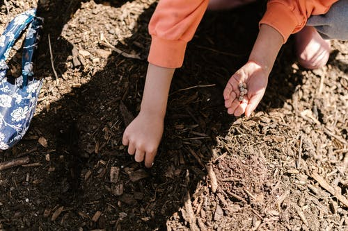 Darmowe zdjęcie z galerii z dziecko, gleba, gospodarstwo