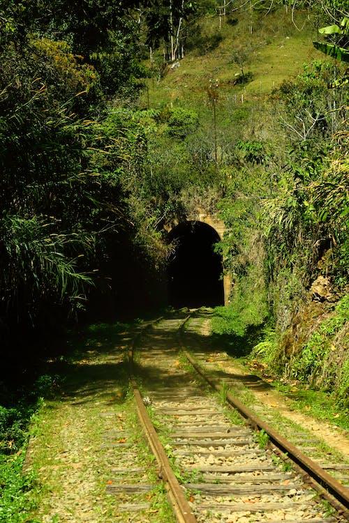 Gratis arkivbilde med tunel