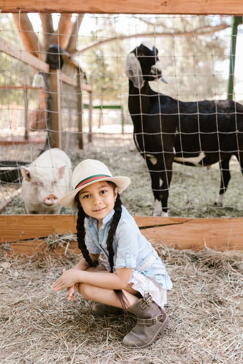 Free stock photo of agriculture, barn, child