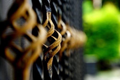 Free stock photo of black, gate, golden gate