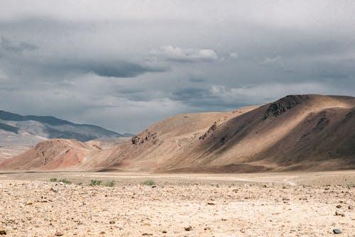 가뭄, 건조한, 경치의 무료 스톡 사진