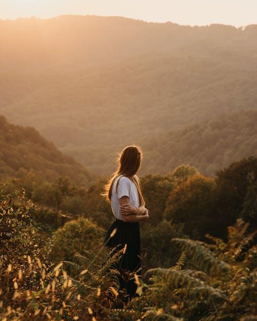Foto stok gratis alam, bagus, bagus sekali