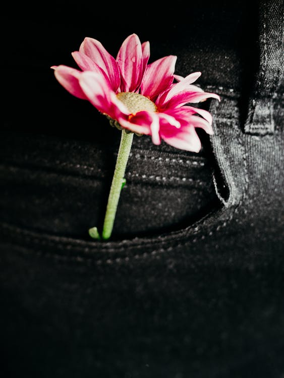 Pink and White Flower on Black Leather Textile