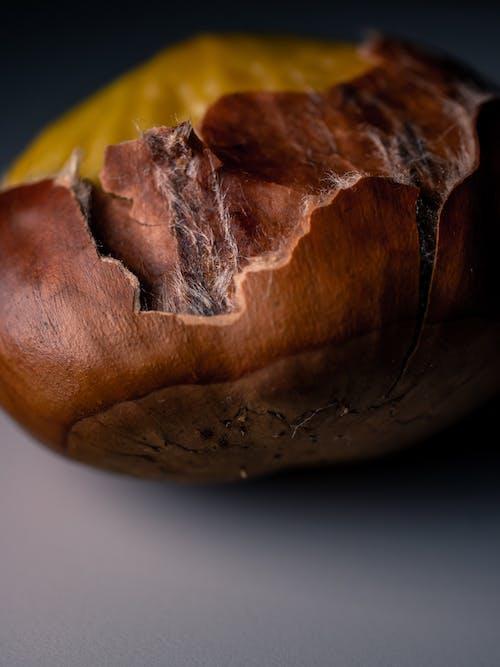 Free stock photo of chestnut, nut