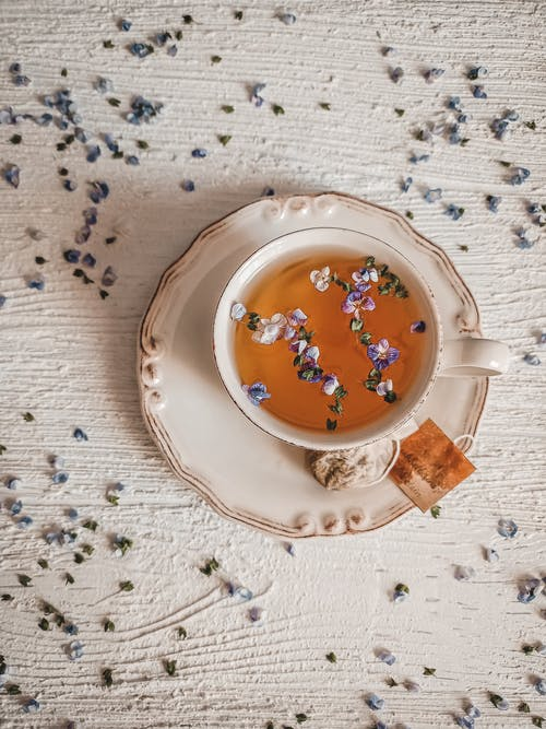 Free stock photo of afternoon tea, beach, beautiful flowers