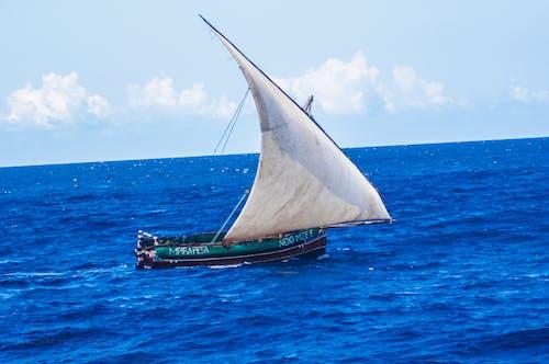 Free stock photo of future ocean blue ocean, one ocean protect ocean