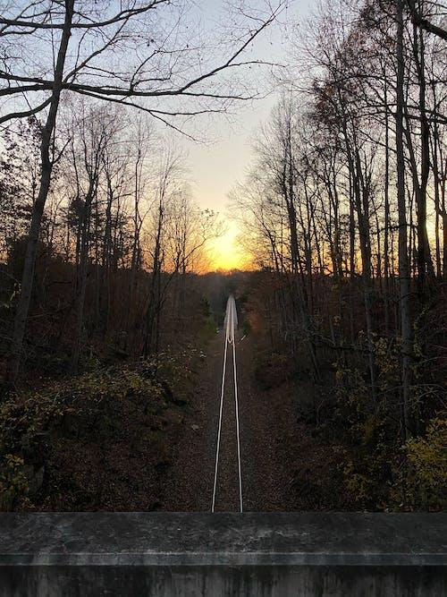 Free stock photo of beautiful sunset, bridge, rail tracks