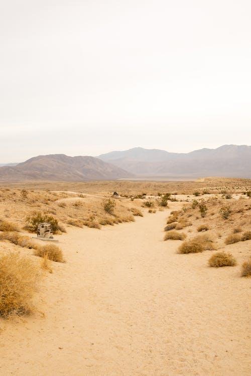 Бесплатное стоковое фото с гора, горячий, долина