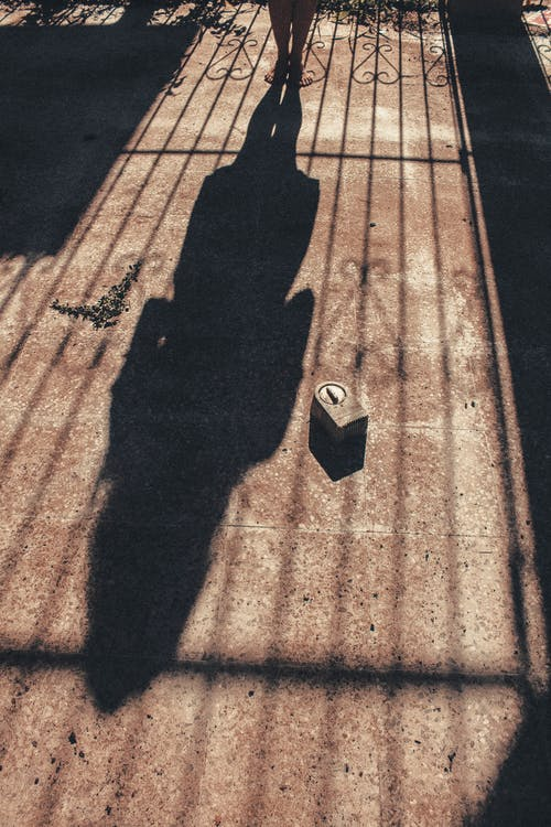 Shadow of Person on Brown Wooden Dock