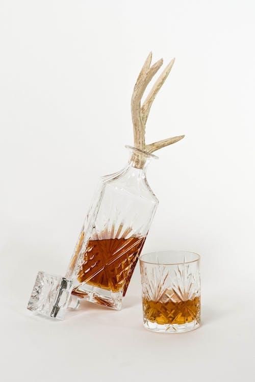 Ingyenes stockfotó agancs, alak, alkohol témában
