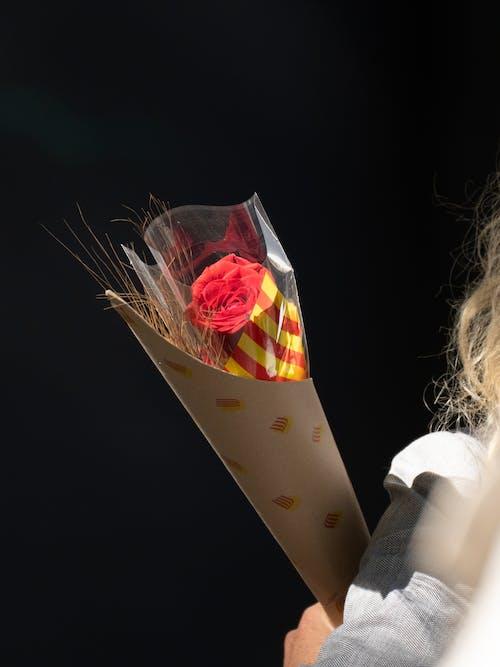 Free stock photo of art, birthday, candle