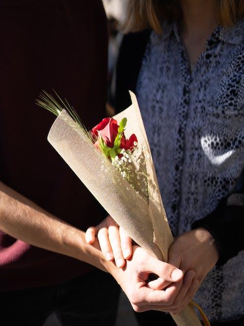 Fotos de stock gratuitas de afecto, amor, cariño