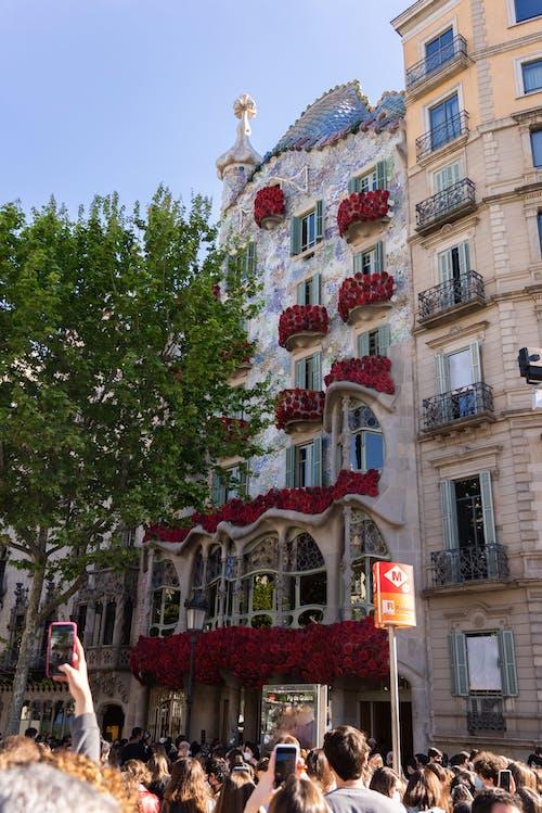 Gratis lagerfoto af altaner, arkitektur, blomster
