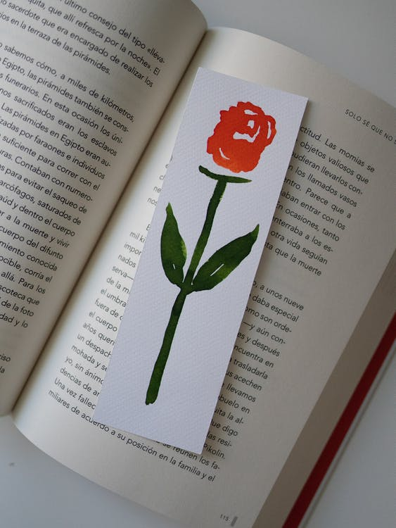 A Rose Bookmark on an Open Book