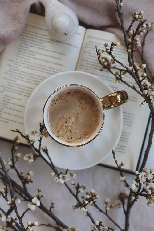 From above mug of hot coffee on opened book near decorative white bird and branches with flowers in light room