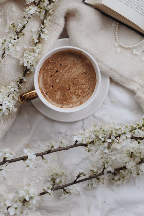 Cup of coffee near branches
