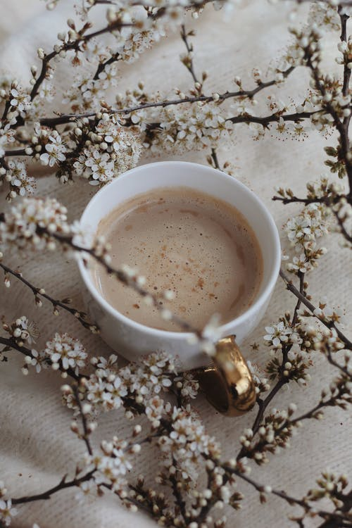 From above of white mug of aromatic coffee with foam placed on soft plaid amidst blooming sprigs in light room