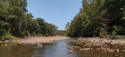 Free stock photo of blue sky, creek, woods