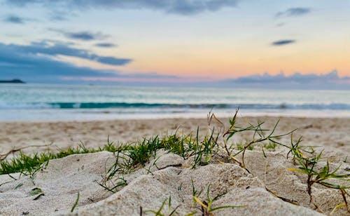 Immagine gratuita di spiaggia