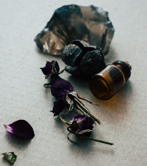 From above of empty small glass jar and dried roses placed on light table in daytime