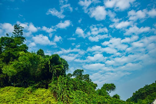 Free stock photo of cloud, mây chiều