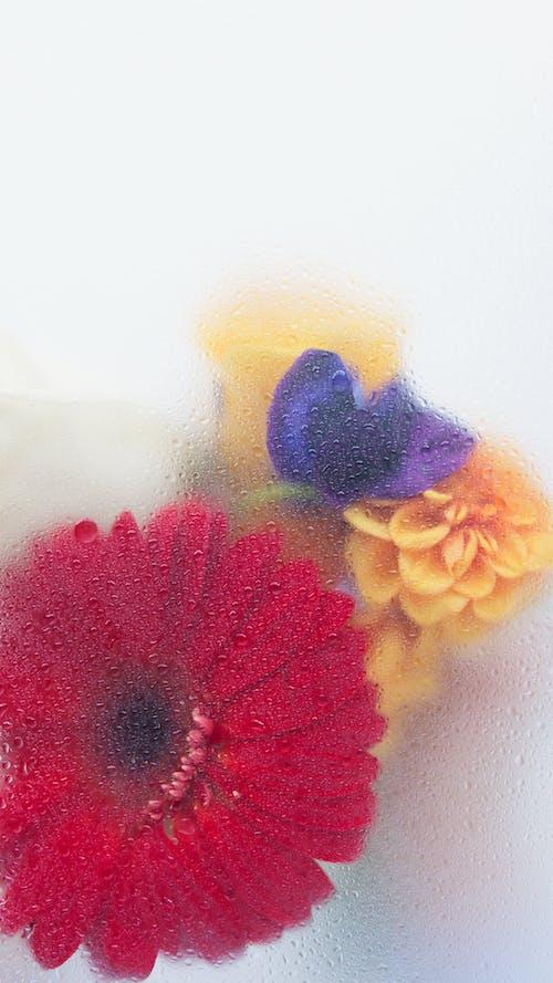 Ilmainen kuvapankkikuva tunnisteilla abstrakti, asetelma, efekti