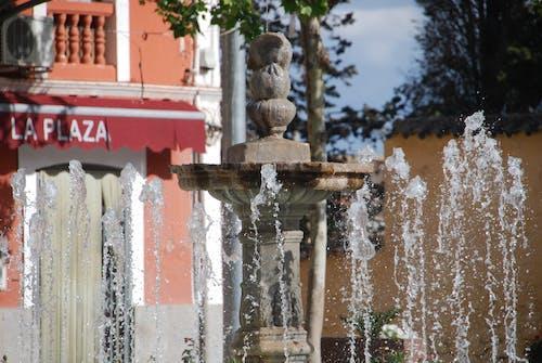 Foto profissional grátis de água, fonte