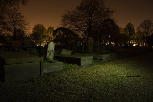 Free stock photo of night, dark, halloween, horror