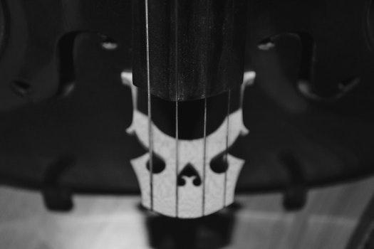 Free stock photo of music, bw, cello, black and-white