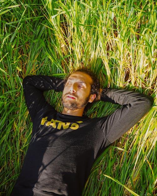 Kostenloses Stock Foto zu draußen, entspannung, feld