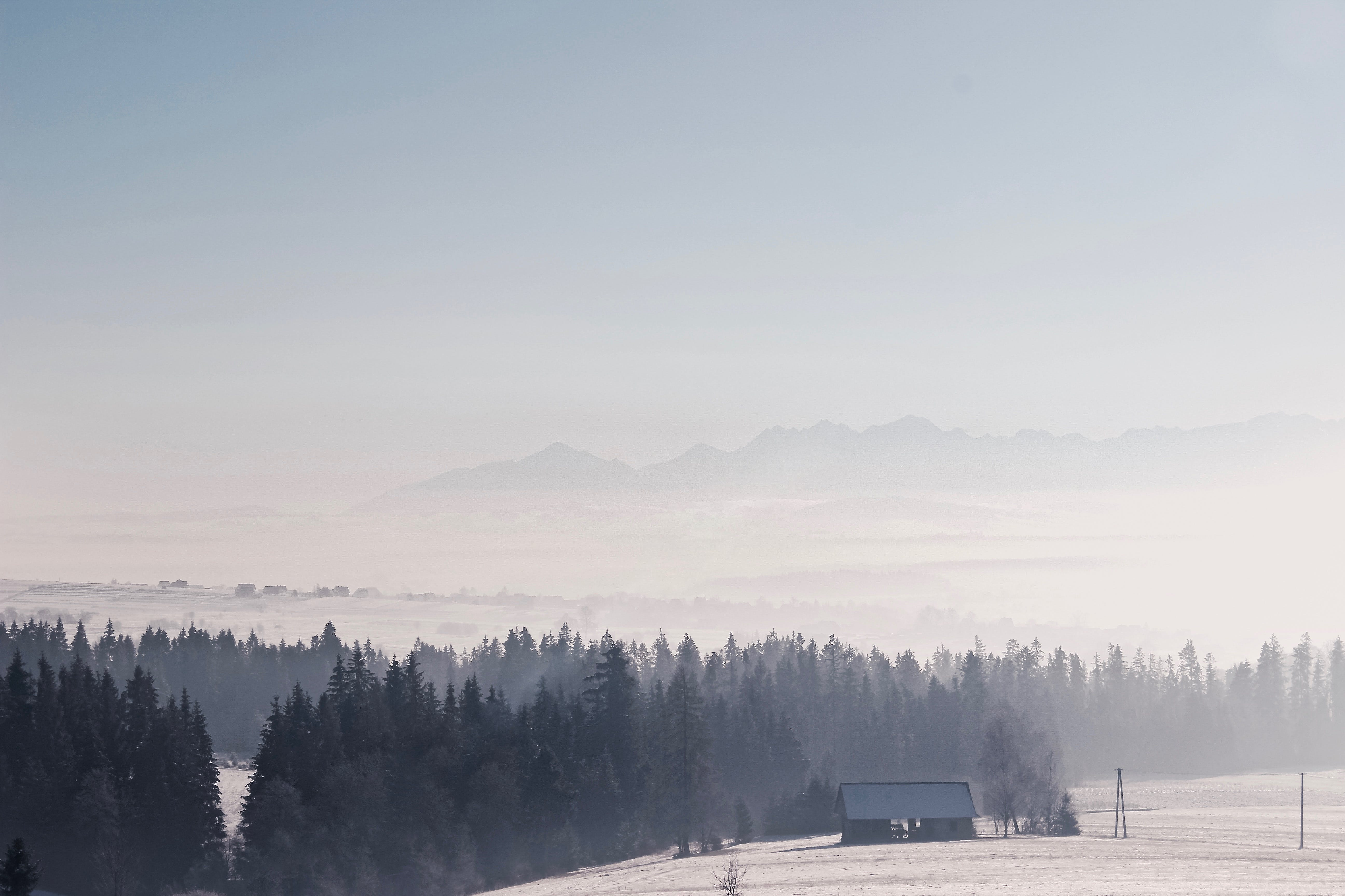 Free stock photo of mountains, forest, winter, frozen