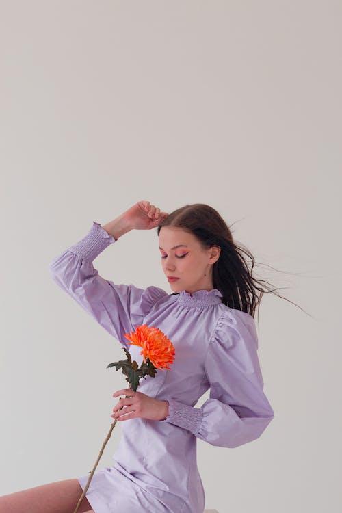 インドア, オレンジ, カリスマ的の無料の写真素材