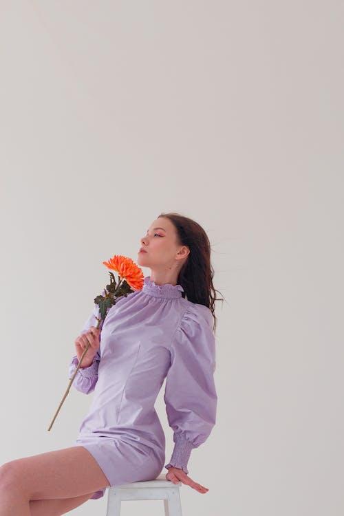 オレンジ, ゴージャス, コピースペースの無料の写真素材