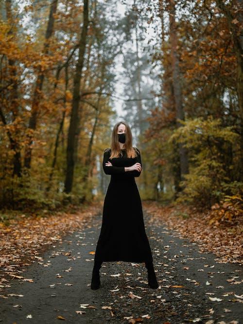 Foto d'estoc gratuïta de alba, amor, arbre