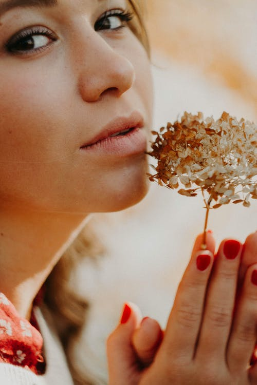 Crop romantic woman with blooming flower in sunbeam