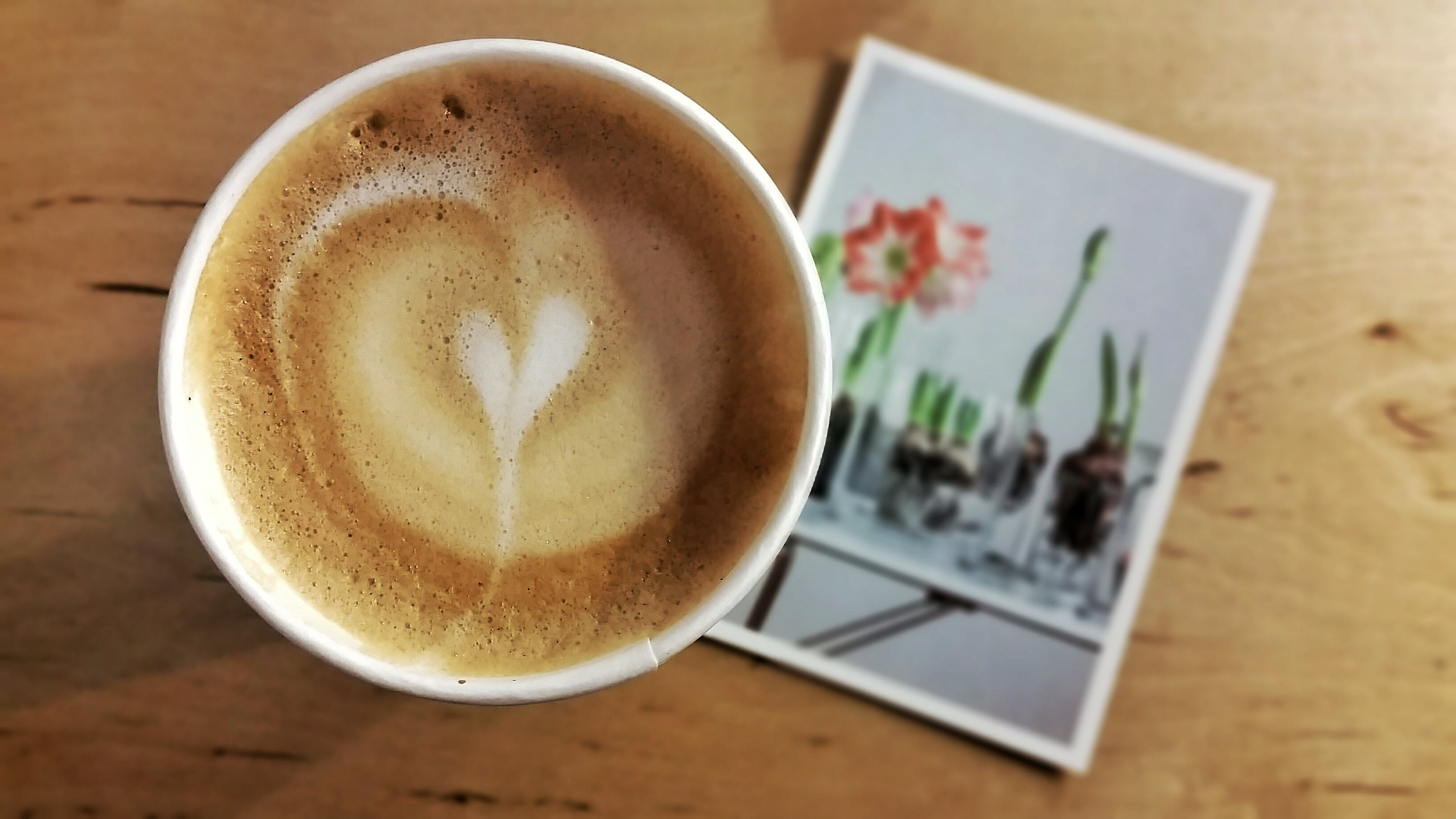 Espresso on White Ceramic Cup on Red Flower Photograph