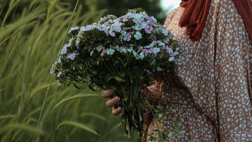 Side view of unrecognizable woman holding bouquet of delicate blue wildflowers in green field