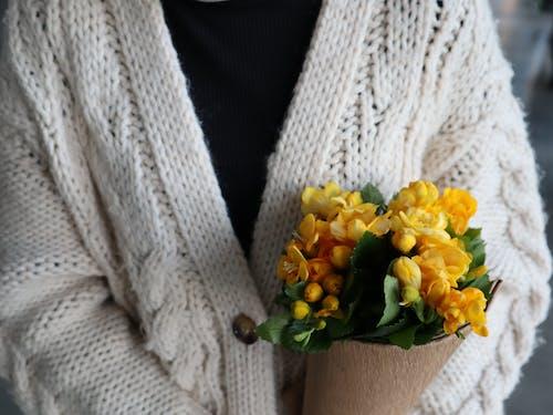 Foto profissional grátis de □ gentil, abrigo, amarelo