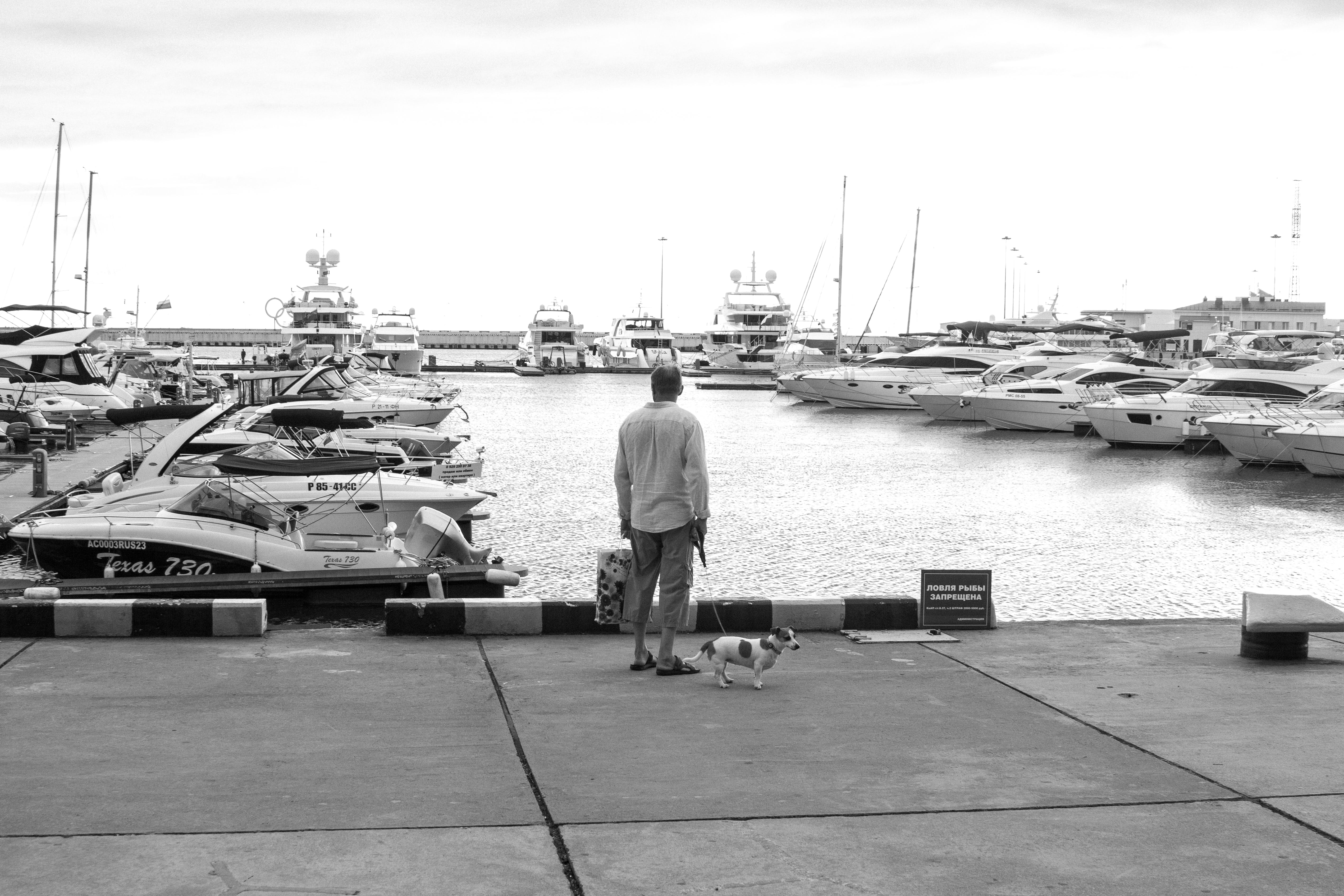 Man Standing On A Concrete Dock Near Body Of Water