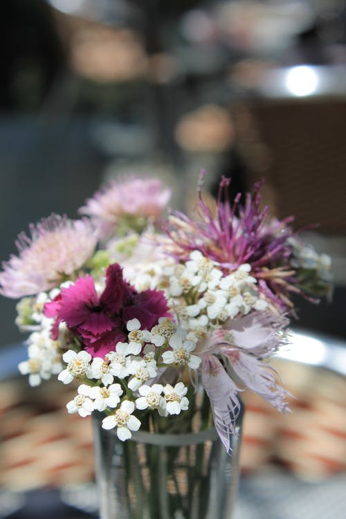 arranjament floral, color, concentrar-se
