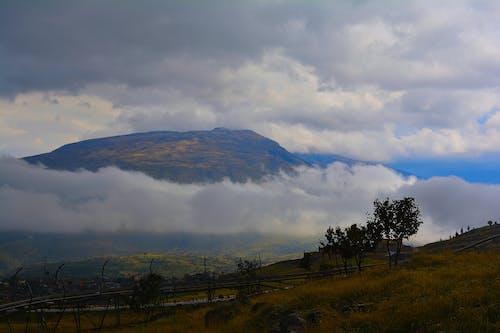 Gratis stockfoto met bergtop, blauwe bergen, bomen, kleuren