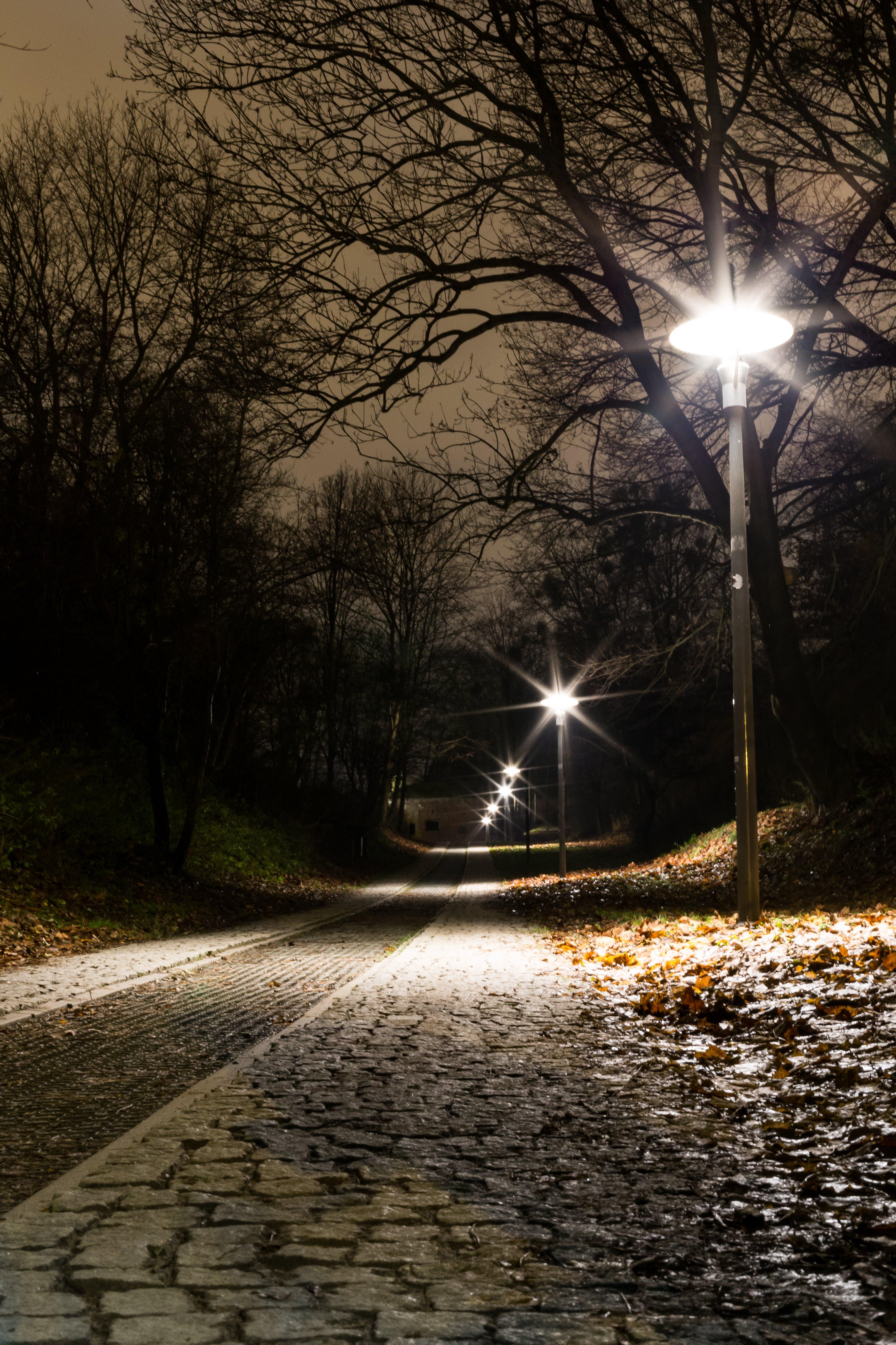 Free stock photo of autumn, forts, lantern, lanterns