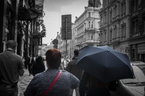 Darmowe zdjęcie z galerii z czarny i biały, czerwony, deszcz