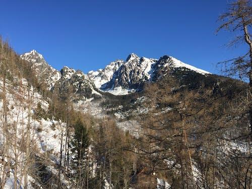 タトラ, 冬, 山岳, 雪の無料の写真素材