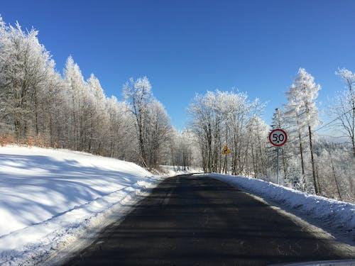 冬, 冬の道, 制限速度, 道路の無料の写真素材